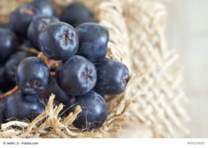 ARONIA_superfoods