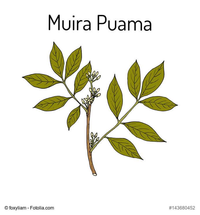 MUIRA_PUAMA_natuerlich
