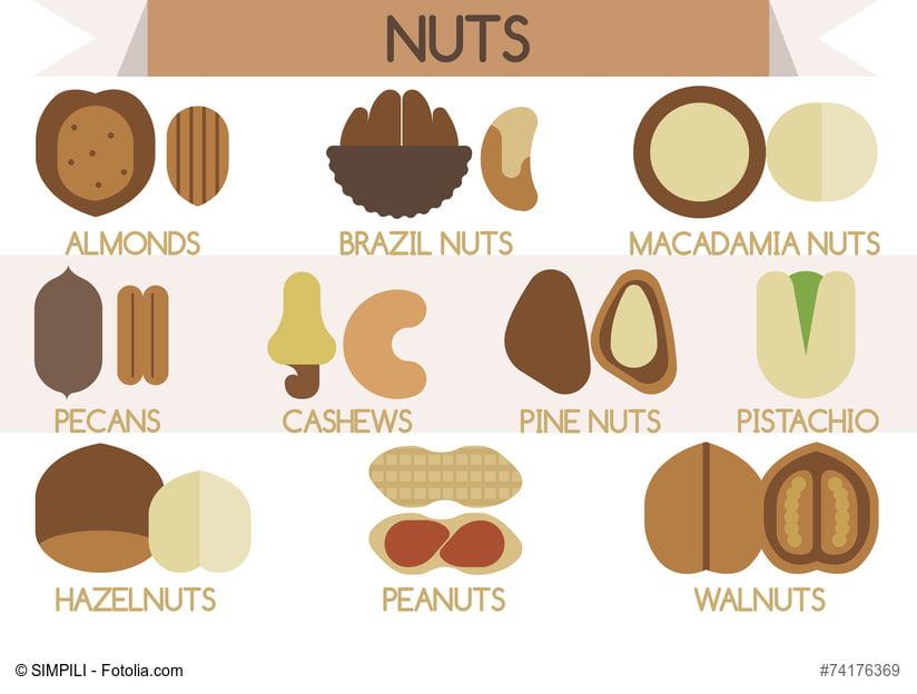 Nüsse Infografik